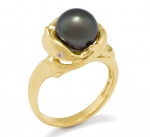 14K Dolphin Ring - Black